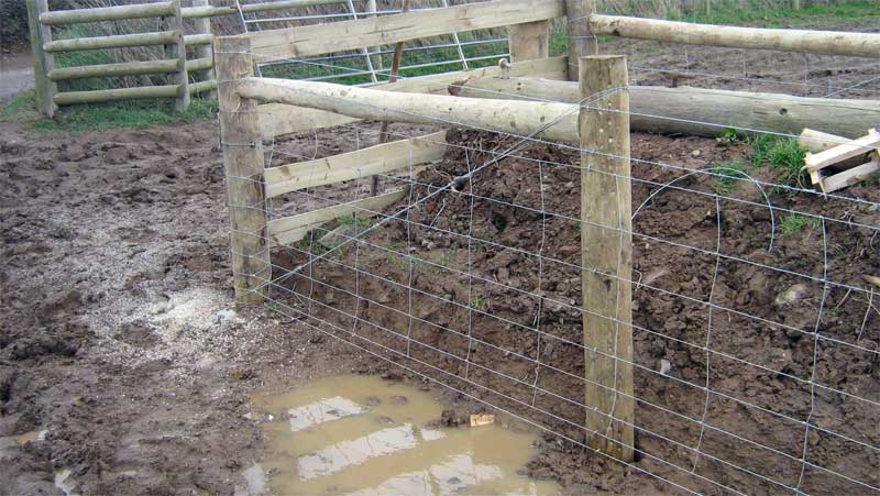 CATTLE STOCK FENCING