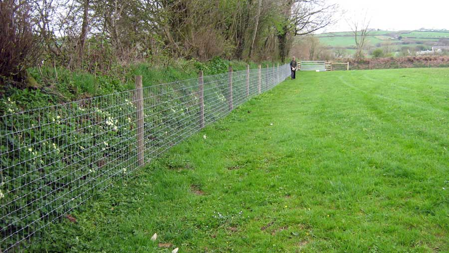 HORSE STOCK FENCING